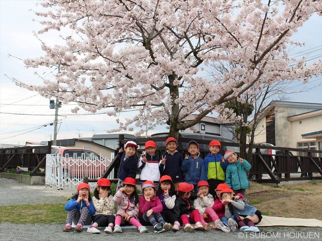 春・お花の季節~たんぽぽであそぼう!